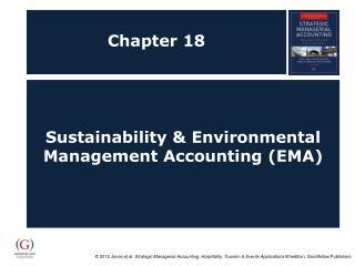 Sustainability  Environmental Management Accounting EMA