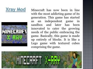 Minecraft Gate