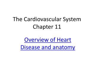 The Cardiovascular System Chapter 11