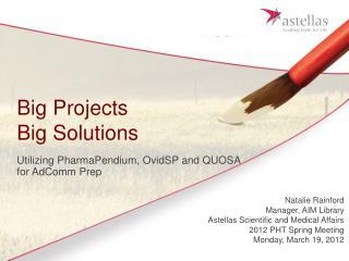 Big Projects  Big Solutions