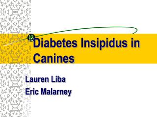 diabetes insipidus in canines