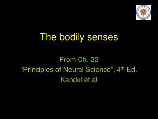 The bodily senses