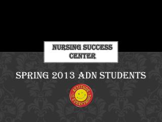 Nursing Success Center