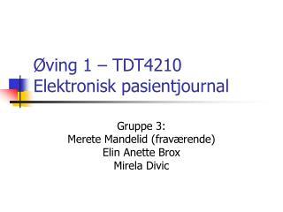 ving 1   TDT4210 Elektronisk pasientjournal