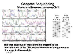 Genome Sequencing Gibson and Muse on reserve Ch 2
