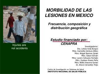 MORBILIDAD DE LAS LESIONES en MEXICO   Frecuencia, composici n y distribuci n geogr fica   Estudio financiado por:  CENA