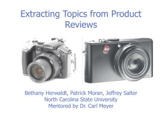 Extracting Topics from Product Reviews