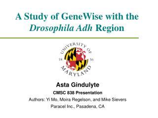 a study of genewise with the drosophila adh region