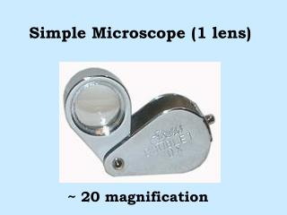 Simple Microscope 1 lens