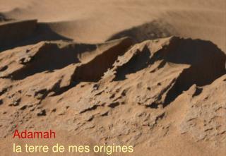 Adamah  la terre de mes origines