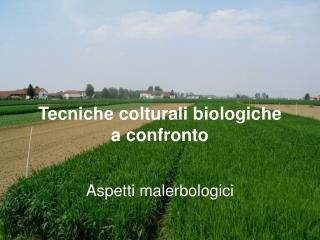 Tecniche colturali biologiche  a confronto