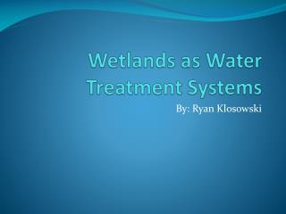 Wetlands as Water Treatment Systems