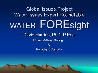 Global Issues Project Water Issues Expert Roundtable WATER  FOREsight