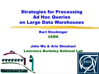 strategies for processing ad hoc queries on large data warehouses