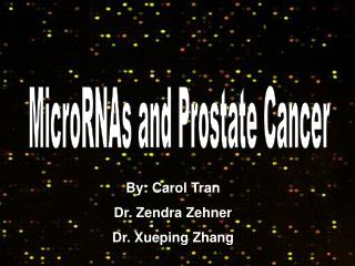 MicroRNAs and Prostate Cancer