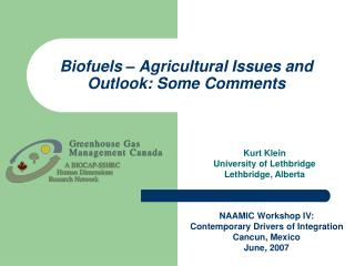 Biofuels   Agricultural Issues and Outlook: Some Comments