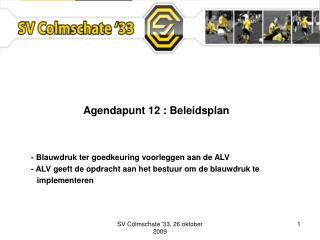 Agendapunt 12 : Beleidsplan   - Blauwdruk ter goedkeuring voorleggen aan de ALV   - ALV geeft de opdracht aan het bestuu