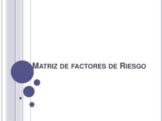 Matriz de factores de Riesgo