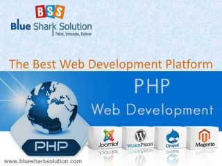 PHP Web Development : The Best Web Development Platform.
