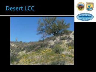 Desert LCC