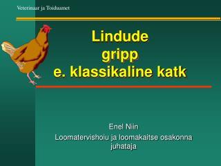 Lindude  gripp  e. klassikaline katk