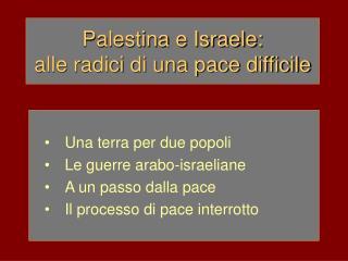 Palestina e Israele: alle radici di una pace difficile