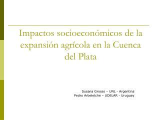 Impactos socioecon micos de la expansi n agr cola en la Cuenca del Plata