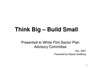 Think Big   Build Small