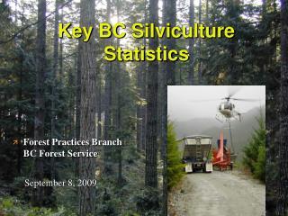 Key BC Silviculture Statistics
