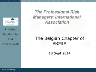 risk management: the profession
