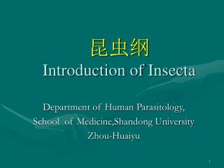 Introduction of Insecta