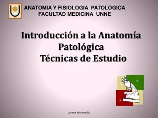 Introducci n a la Anatom a Patol gica     T cnicas de Estudio