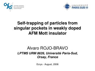Self-trapping of particles from  singular pockets in weakly doped  AFM Mott insulator