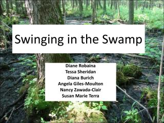 Swinging in the Swamp