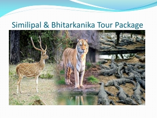 Orissa Packages: Simlipal and Bhitarkanika tour Package
