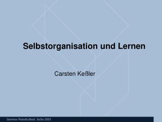 Selbstorganisation und Lernen