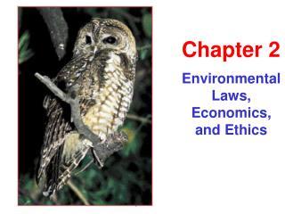 Environmental Laws, Economics, and Ethics