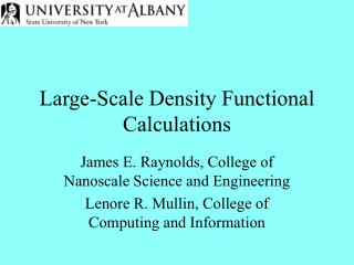Large-Scale Density Functional Calculations