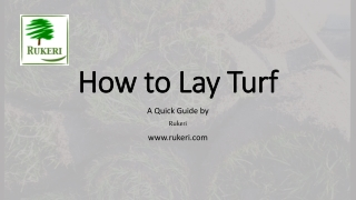 How to Lay Turf - a Quick Guide on Laying Turf