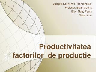 Productivitatea factorilor  de productie