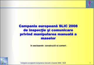 Campania europeana SLIC 2008 de inspectie si comunicare  privind manipularea manuala a maselor   n sectoarele  construct