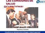 LAS COMISIONES DE  SALUD OCUPACIONAL