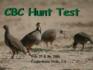 CBC Hunt Test