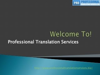 professionaltranslationservices.biz