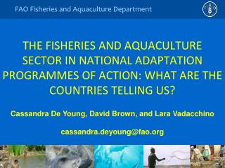 THE FISHERIES AND AQUACULTURE SECTOR IN NATIONAL ADAPTATION PROGRAMMES OF ACTION: WHAT ARE THE COUNTRIES TELLING US