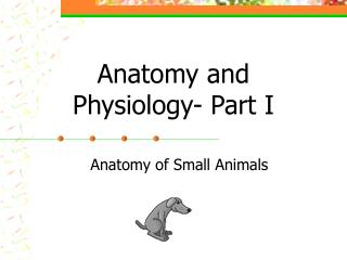 Anatomy and Physiology- Part I