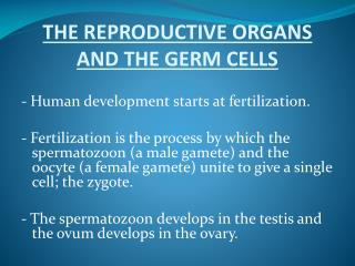 THE REPRODUCTIVE ORGANS AND THE GERM CELLS