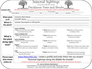 Seasonal Sightings Along the Middle Rio Grande Deciduous Trees and Shrubs
