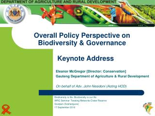 Overall Policy Perspective on Biodiversity  Governance