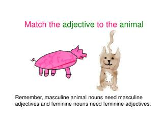 Match the adjective to the animal